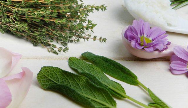 Sciroppo tosse naturale a base di piante officinali