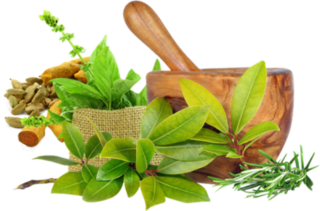 https://rosoliver.com/wp-content/uploads/2019/04/kisspng-ayurveda-for-dummies-ayurvedic-healing-medicine-pa-ayurvedic-home-remedies-page-25-of-82-health-a-5b7d965f7bea27.0547118815349571515076-320x211.png